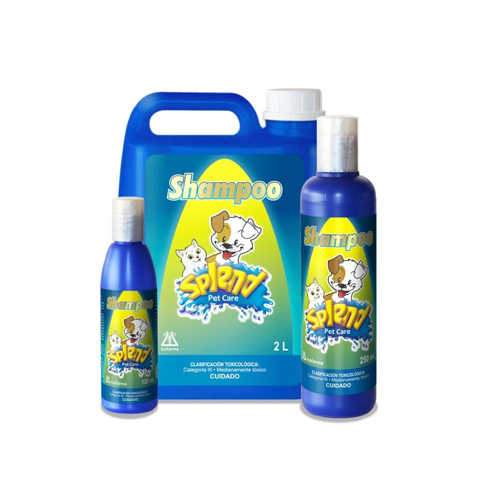 Shampoo-Insecticida